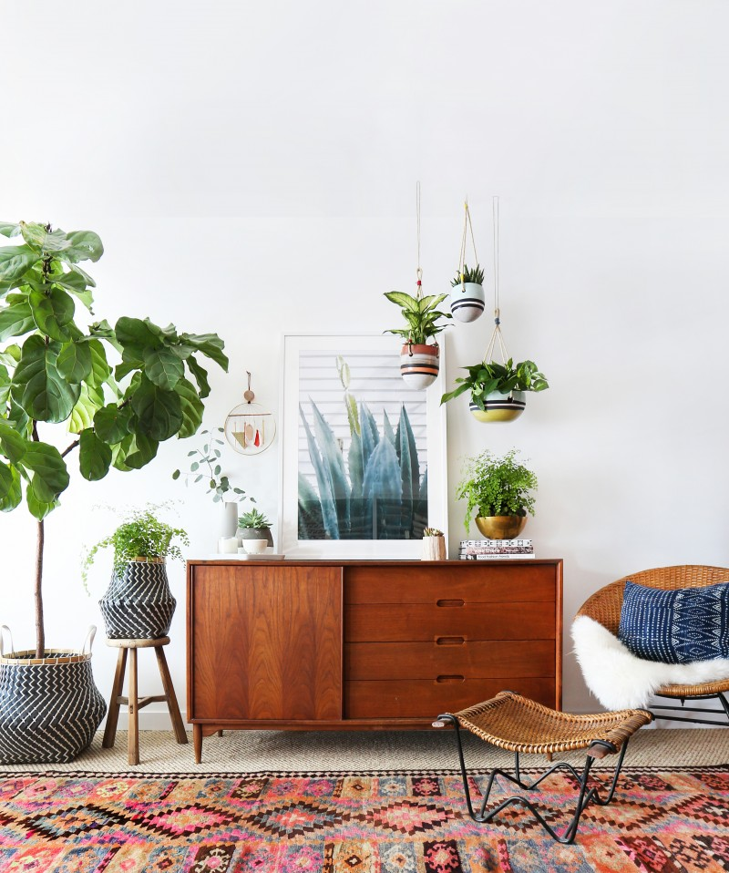 Fresh Indoor Plants Decoration Ideas For Interior Home: An Indoor Hanging Garden With Anthropologie [A How-To