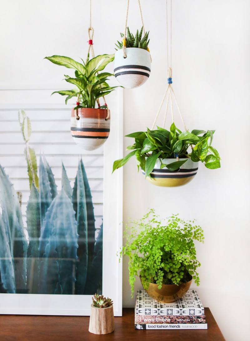 An indoor hanging garden with anthropologie a how to for Interior designs with plants
